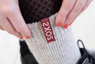 Soxs.co-Image 2019